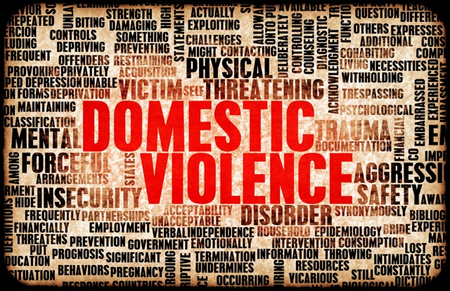 Domestic Violence and Abuse Conference Picture